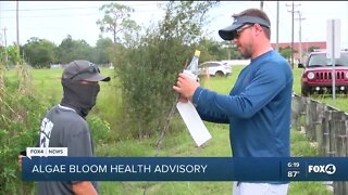 Alagae blooms found in two cape coral canals