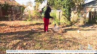 Baltimore teen launches landscaping business with skills learned through community cleanups
