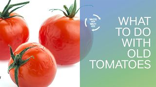 Waste not want not: what to do with old tomatoes - Video