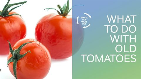 Waste not want not: what to do with old tomatoes