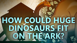 How could huge dinosaurs fit on the Ark?