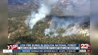 The Lion Fire has burned more than 3800 acres in the Sequoia National Forest