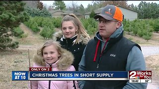 Christmas trees in short supply - Video