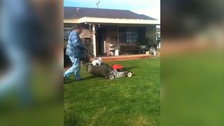 Lawnmower Riding Dog - Video