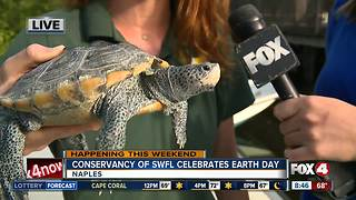 Celebrate Earth Day at the Conservancy of Southwest Florida - 8:30am live report