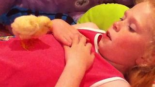 Young Girl Sings Lullabies To A Chicken - Video