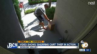 Video shows 'shopping cart' thief in action