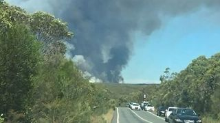 Bushfire Burns in Royal National Park in Sydney's South - Video