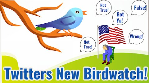 Twitter Unleashes Bird Watch! Look Out, You will Be Turned In!