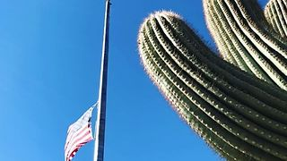 US Flag Flies at Half-Staff to Honor Nevada Shooting Victims - Video