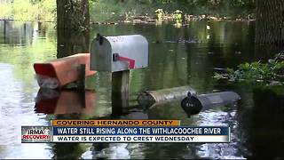 Water still rising along the Withlachoochee River - Video