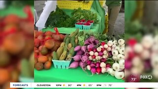 SWFL farmers market uses online shopping on new Local Roots website
