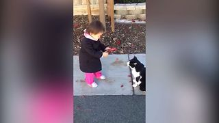 Girl Gives Cat A Sweet Gift