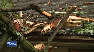 Trees damage houses, cars in Pulaski - Video