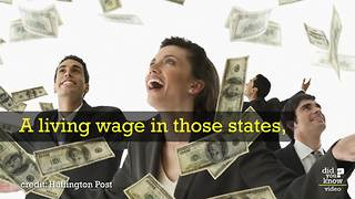 Here's What The US Minimum Wage Actually Costs - Video