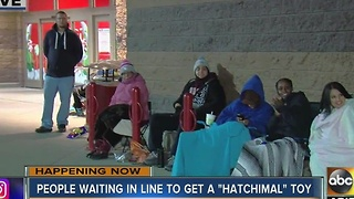 Customers line up outside Target and other stores to try to buy Hatchimals - Video