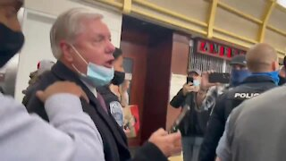 RINO Lindsey Graham Called A Traitor when Confronted by Patriots at Airport in DC