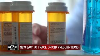 Michigan lawmakers hope new laws can save lives from opioid addiction - Video