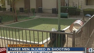 Three people hospitalized after dog park shooting - Video