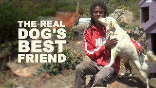 This guy takes puppy love very seriously - Video