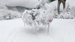 Drone Video Captures Snow Day In Portland - Video