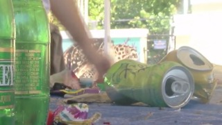 Volunteers pick up aftermath of July 4th trash - Video