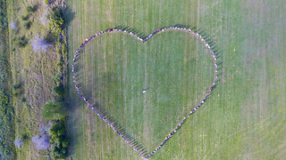 Guests Form Heart Shape For The Most Memorable Drone Wedding Footage - Video