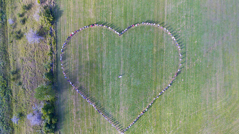 Guests Form Heart Shape For The Most Memorable Drone Wedding Footage