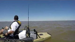 Kayak Fishermen Given Escort by Albino Dolphin - Video