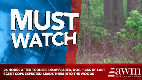 24 Hours After Toddler Disappeared, Dog Picks Up Last Scent Cops Expected. Leads Them Into The Woods