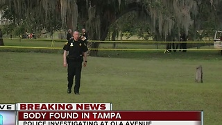 Body found in a ditch in Forest Hills - Video