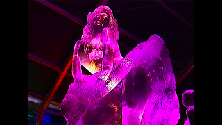 Amazing Belgian Ice Sculptures - Video