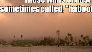 Dust storm covers Southwest - Video