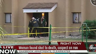 Woman found dead inside Clearwater apartment after reports of gunshots