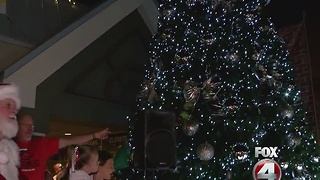 Holiday Festival of Lights - Video