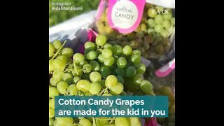Cotton Candy Grapes Are the Hybrid Variety for the Kid in You