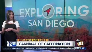 Exploring San Diego: Things to do February 22 - 25 - Video