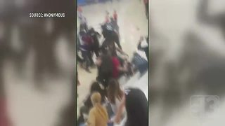 Caught on camera: Adults fight during kid's basketball game - Video