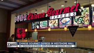 Dirty Dining: 2 eateries inside Westshore Plaza food court shut down for 80+ roaches in the kitchen - Video