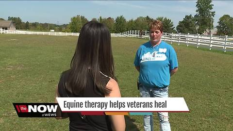 Equine therapy program helps veterans and their families cope with loss and PTSD