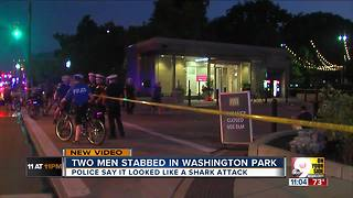 PD: 2 men stabbed at Washington Park - Video