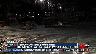 Snow on the Grapevine - Video