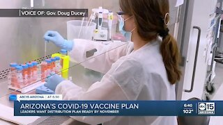 Arizona's COVID-19 vaccine plan