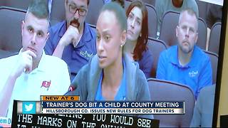 Boy attacked by dog before Hillsborough County meeting about dog training - Video