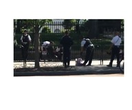 Woman Arrested After Allegedly Trying to Jump White House Fence - Video