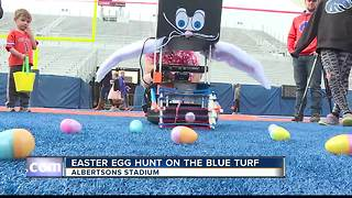 Easter egg hunt on the blue turf - Video