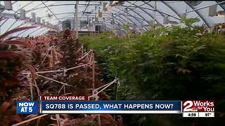 Tentative timeline of medical marijuana legalization in Oklahoma - Video
