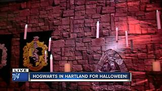 Hartland Halloween display sends trick-or-treaters into world of Harry Potter - Video