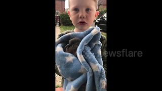Birdcatcher boy: Three-year-old likes 'adopting' pigeons