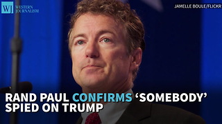Rand Paul Confirms 'Somebody' Spied On Trump - Video